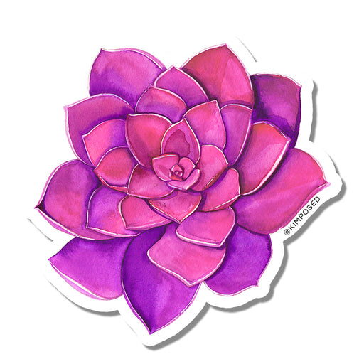Pink Succulent Sticker