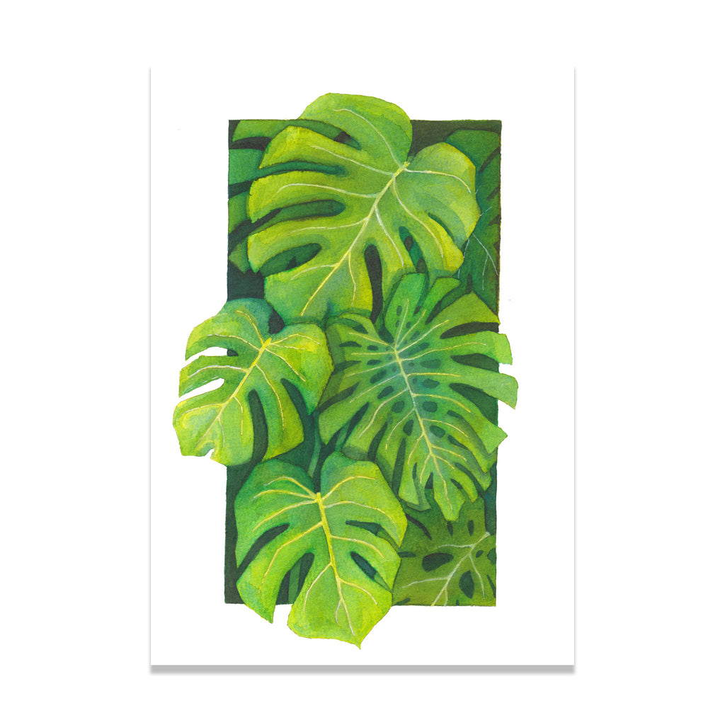 Monstera Jungle Print