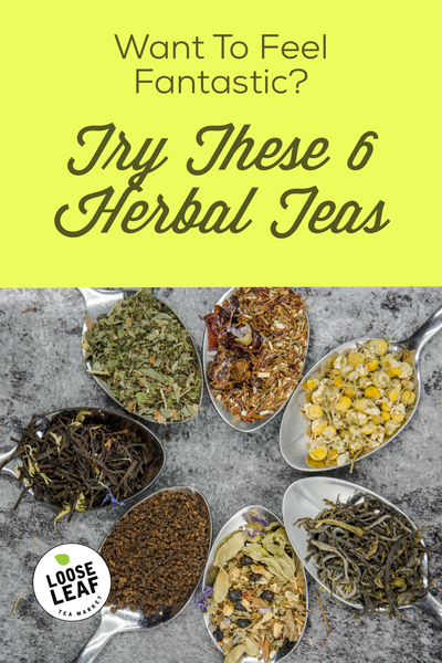 feel fantastic with these 6 herbal teas
