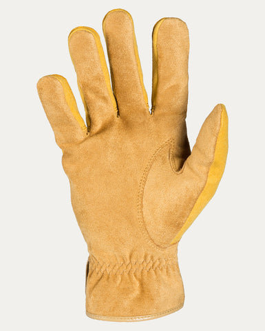 Men's Dakota Fleece Lined & Waterproof Glove