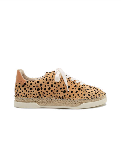 Madox Sneakers In Leopard