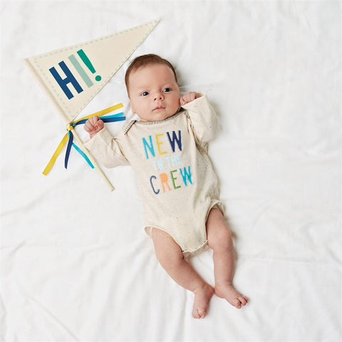 New to the Crew Onesie and Pennant Set