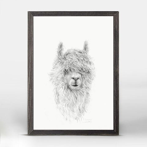 Green Box Crimson The Llama Mini Framed Canvas