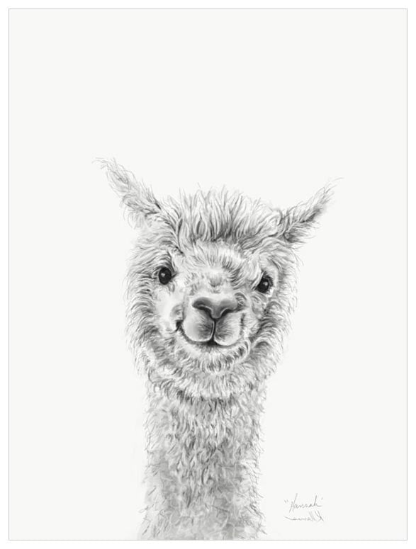 Green Box Hannah The Llama Large Canvas
