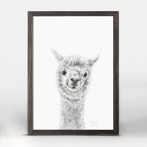 Green Box Hannah The Llama Mini Framed Canvas