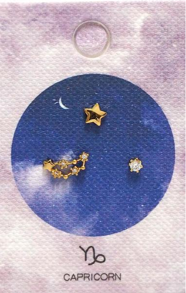 Tai Jewelry Zodiac Constellation Earrings - Capricorn