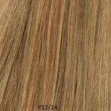 "Natural Way STW Wefted Extensions 12"", 14"", 16"""