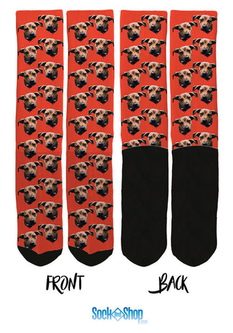 custom pet socks, custom socks, custom dog socks, customized socks, personalized socks, custom crew socks, custom photo socks