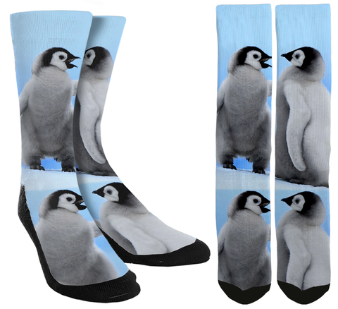 Penguin Socks, Crazy Socks, Novelty Socks, Facts about penguins, customized socks