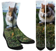Squirrel Crew Socks - SockAndShop