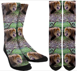 Lion Crew Socks - SockAndShop