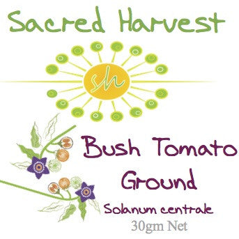Bush Tomato Ground