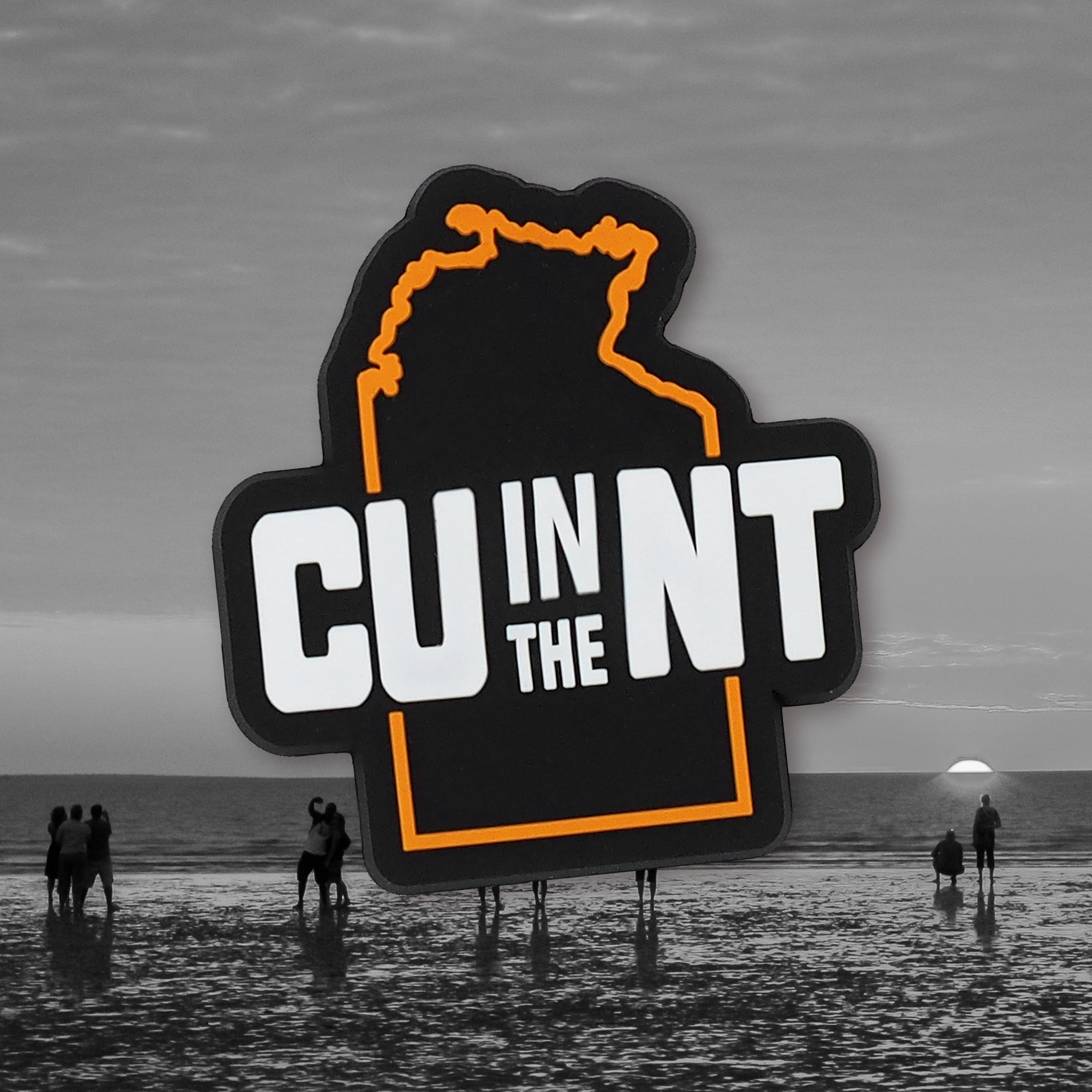 CU in the NT Magnet