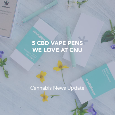 5 CBD Vape Pens We Love At CNU