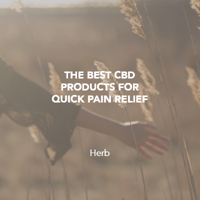 Best CBD for Pain