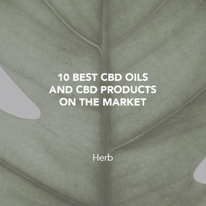 10 best CDB oils and CBD products on the market