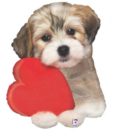 Adorable Puppy Love Balloon - Gifts2remember