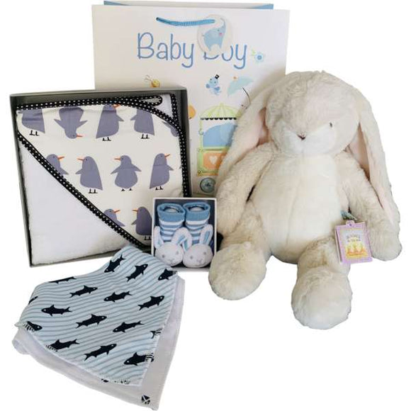 Baby Boy Gift Hamper - Gifts2remember
