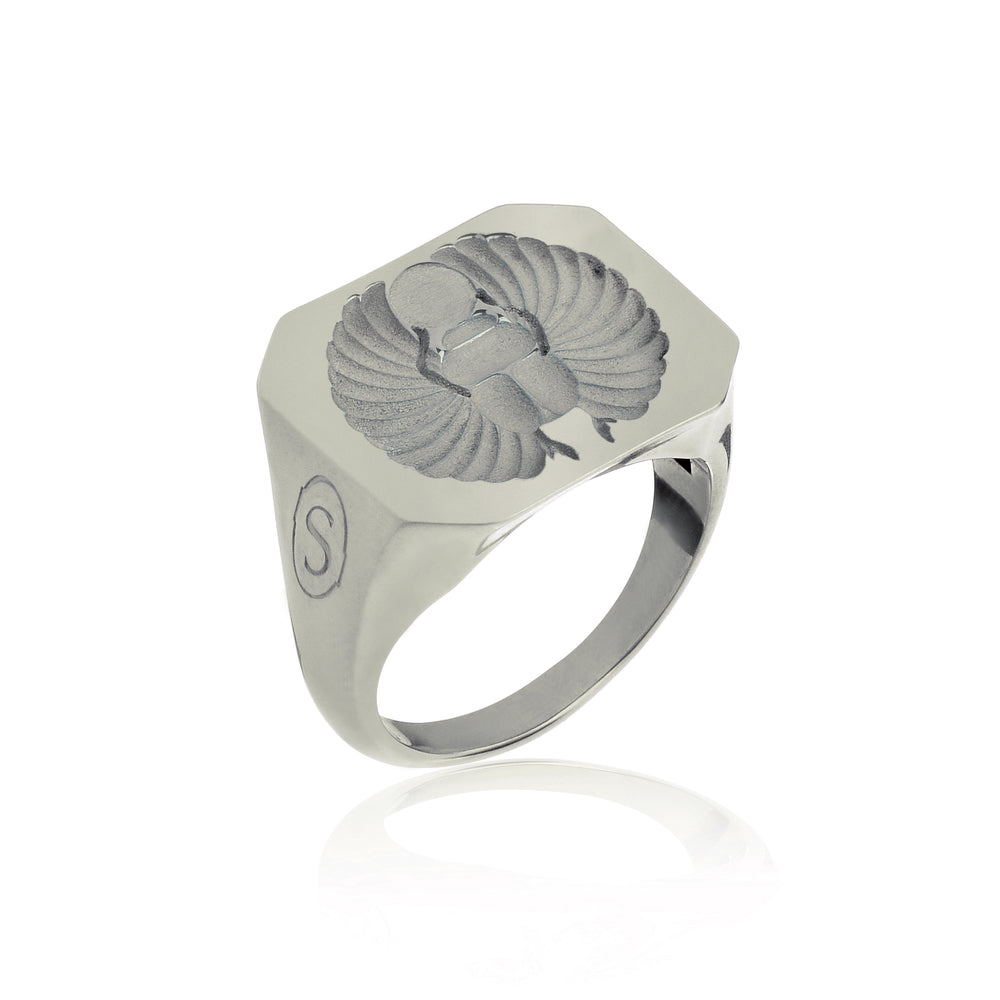 Beetle Seal Ring