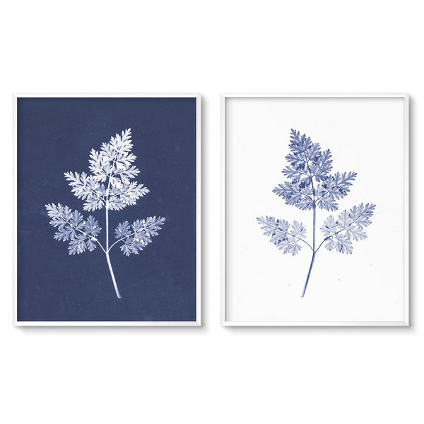 modern botanicals blue cyanotype fern prints