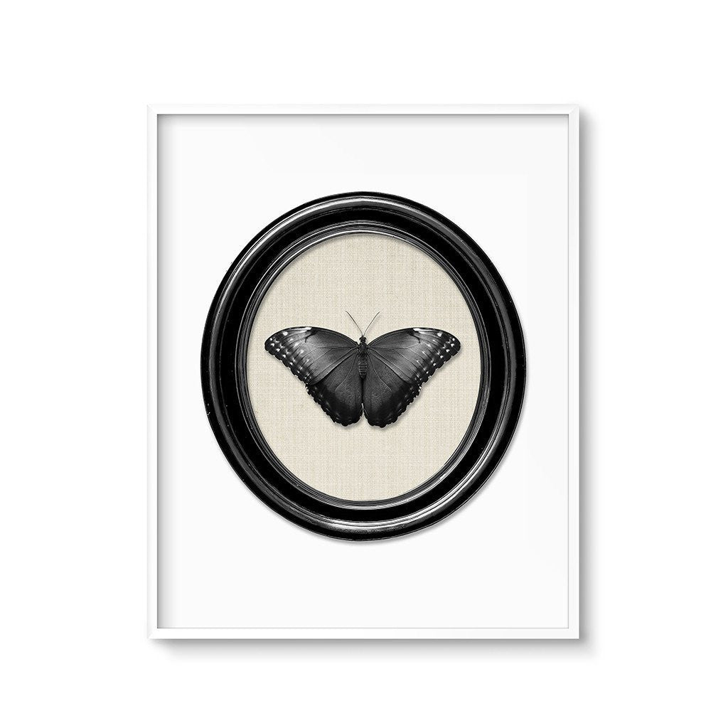 gothic home decor black butterfly art