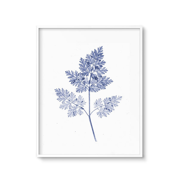 modern botanicals blue cyanotype negative fern leaf print large wall art