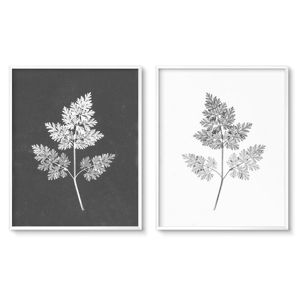 black and white botanical art diptych wall art set ferns