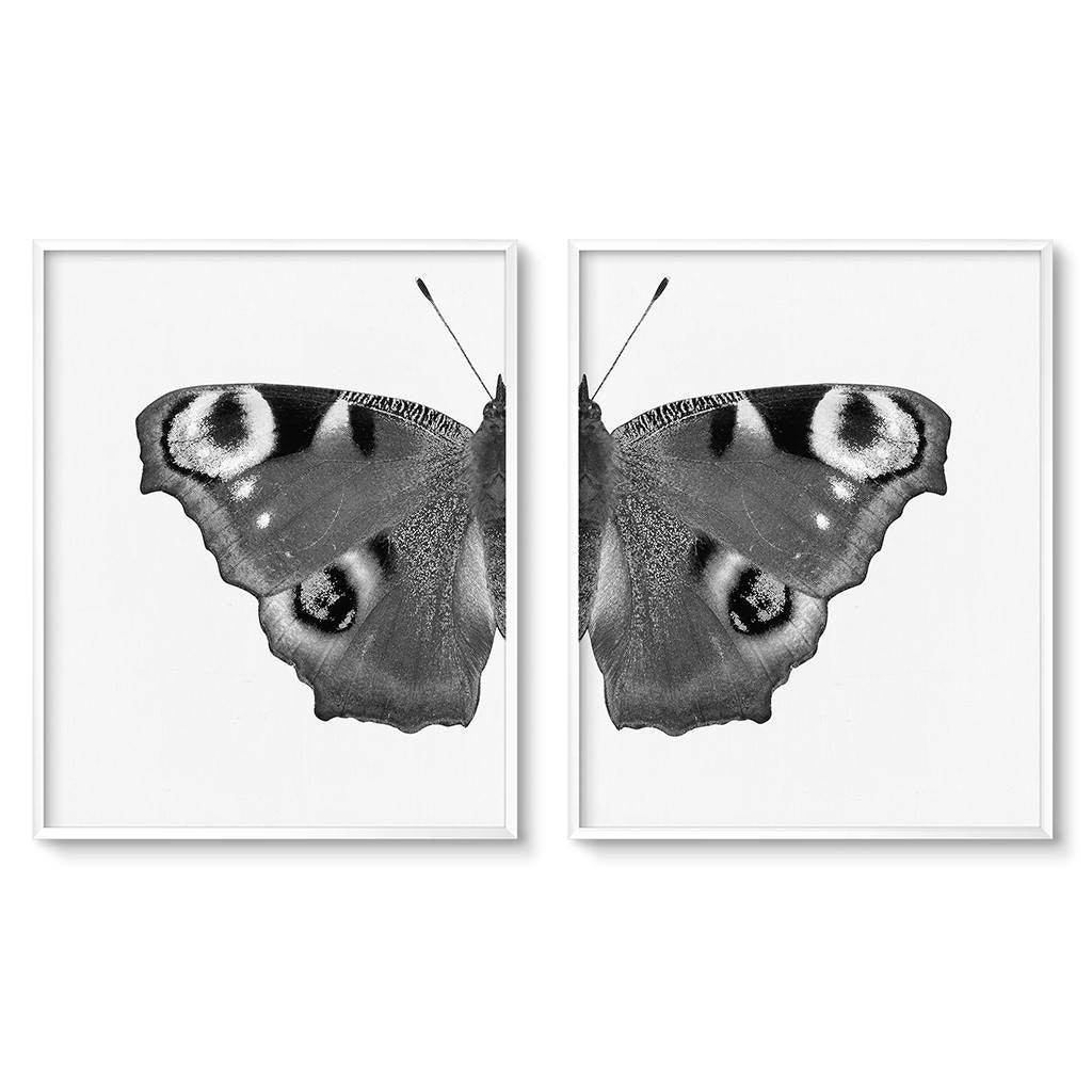 contemporary butterfly wing art print diptych set