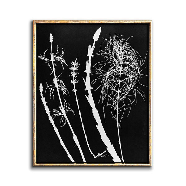 contemporary botanical art print