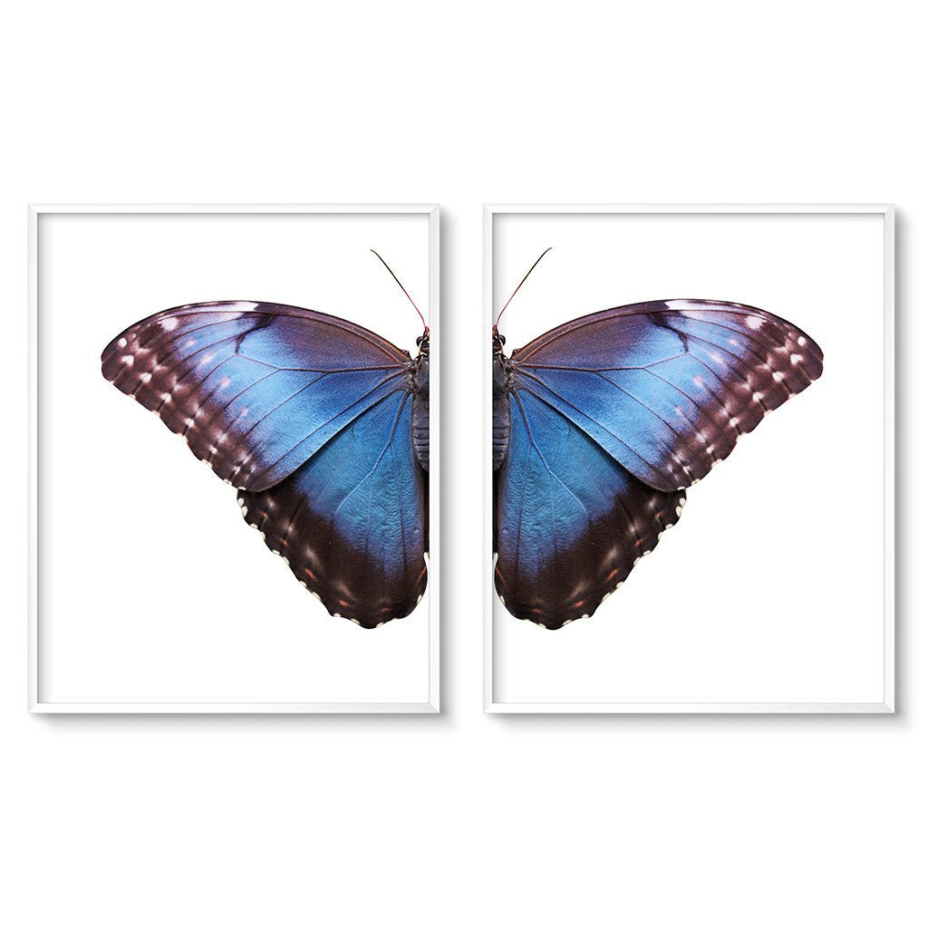 blue butterfly wing art print set of 2 diptych