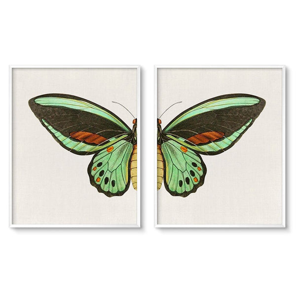 vintage green butterfly wall decor print 2 piece set