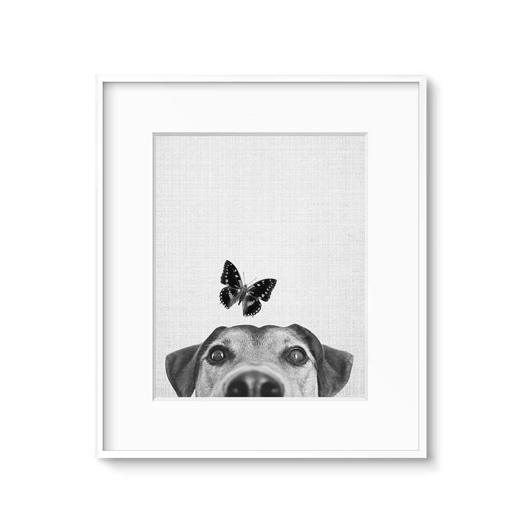 animal nursery art dog and butterfly printable