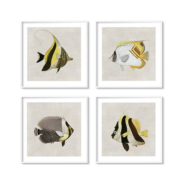 nautical decor wall art set of our vintage tropical fish