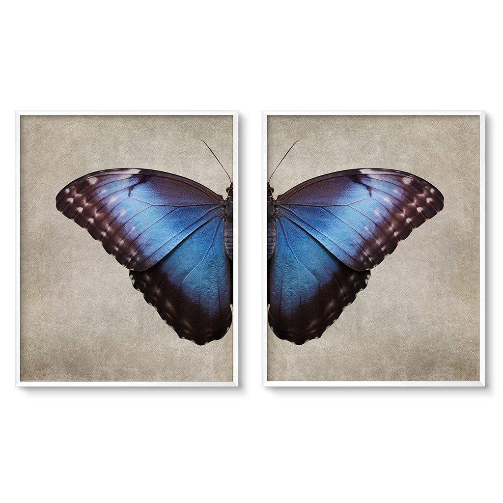 dark butterfly wing diptych art set gothic