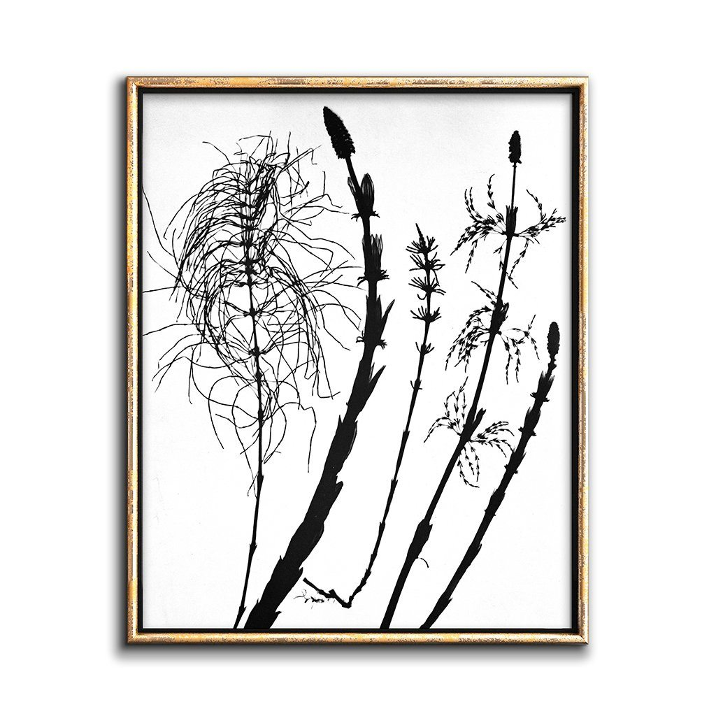 modern botanical wall decor