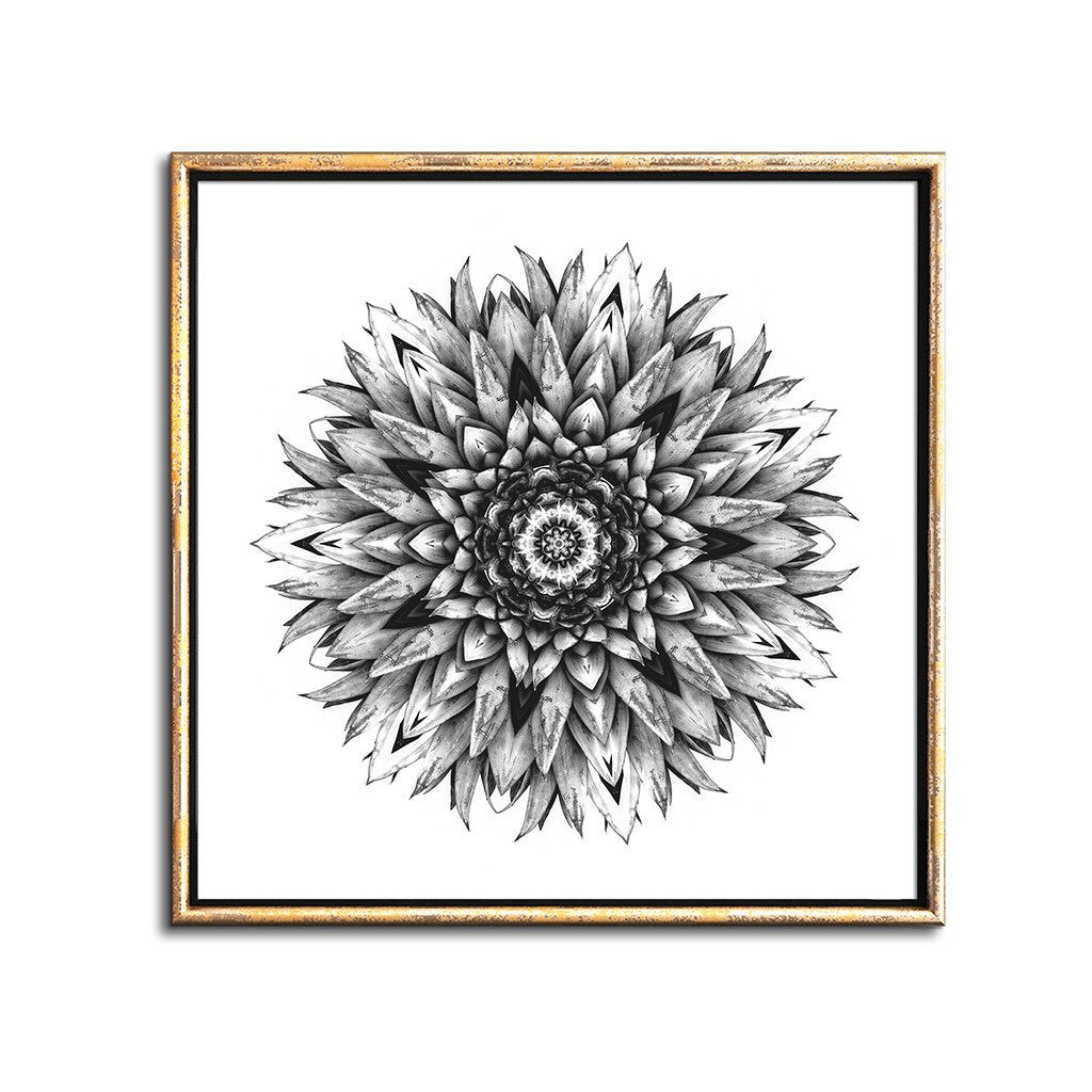tropical decor black and white botanical pineapple print