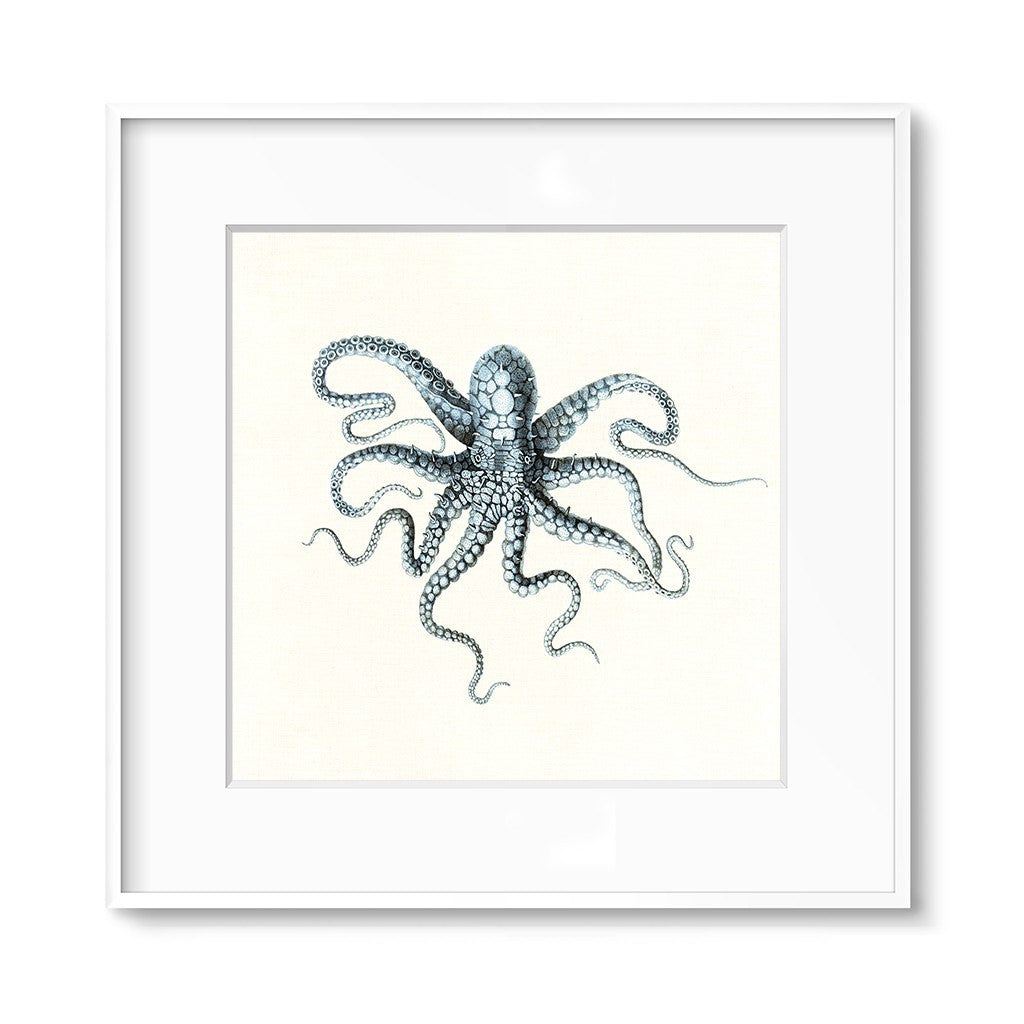 nautical wall decor octopus art print