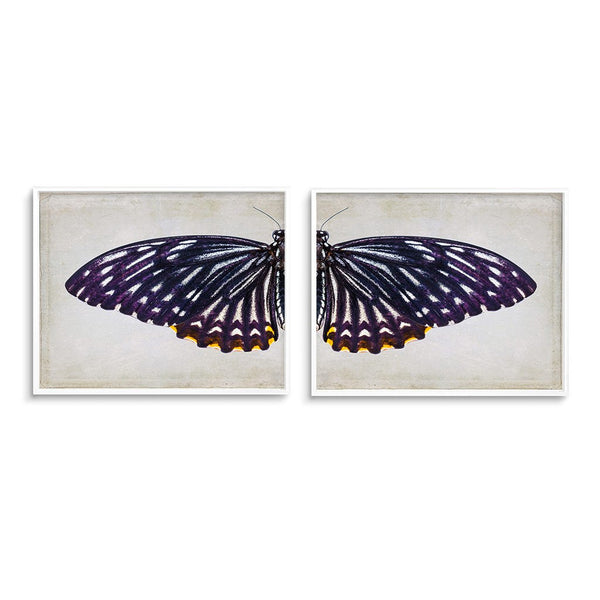purple butterfly wing wall art print set of 2