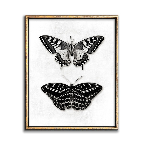 butterfly print black and white gallery wall artwork