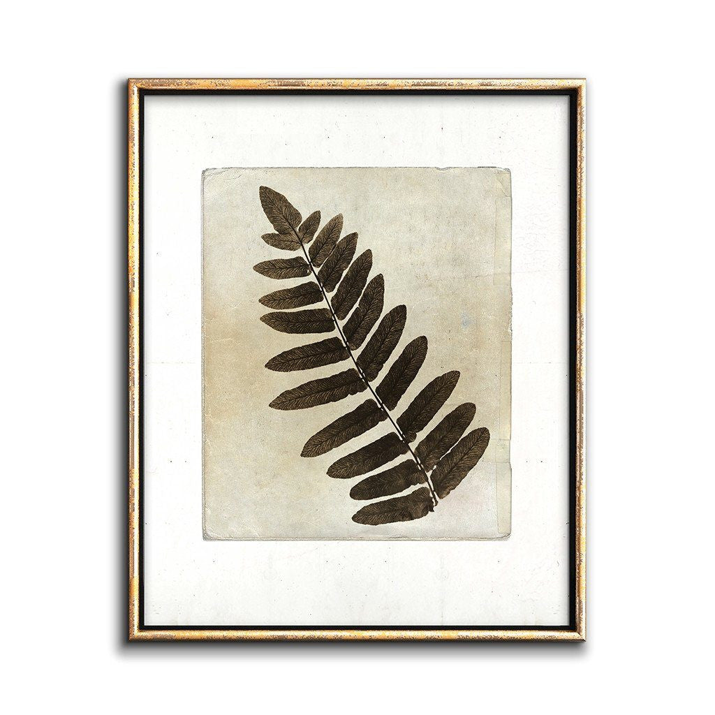sepia botanical wall art printable