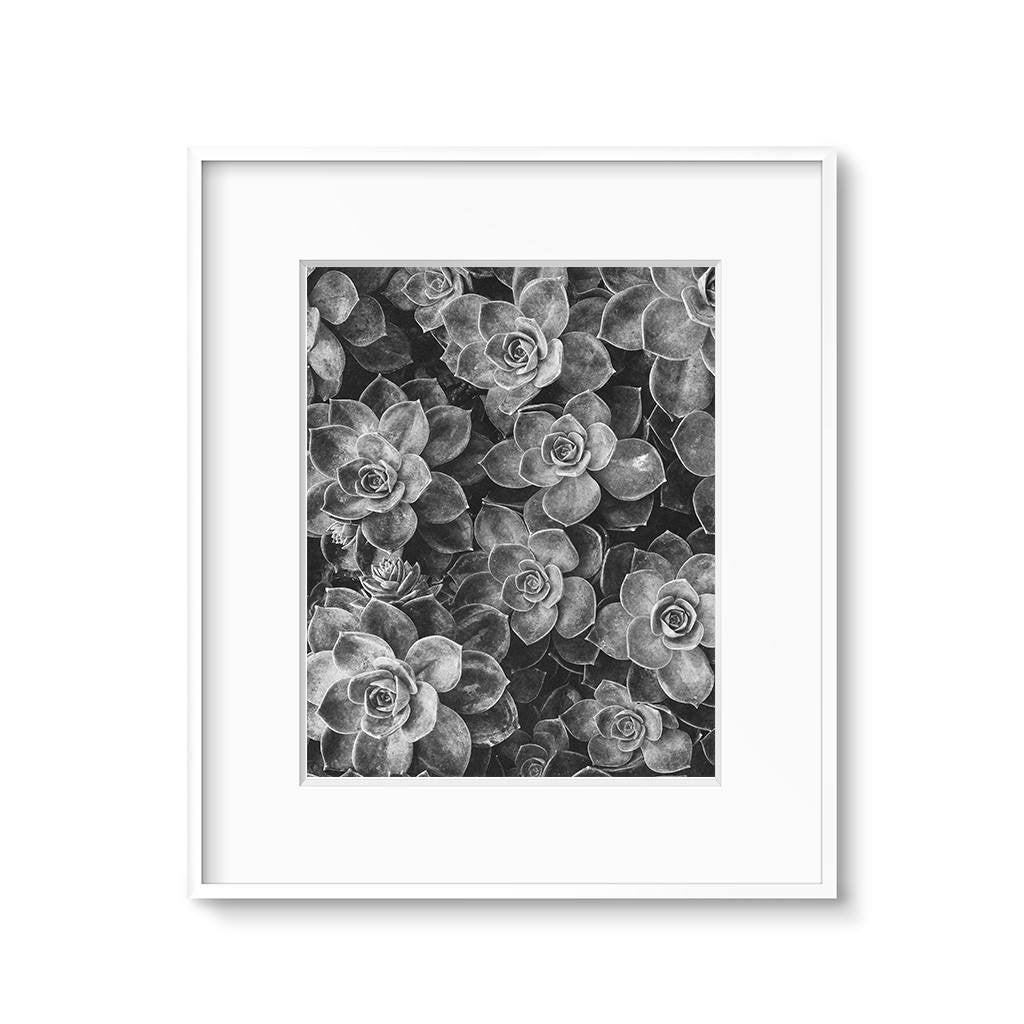 black-and-white-cactus-wall-art-printable