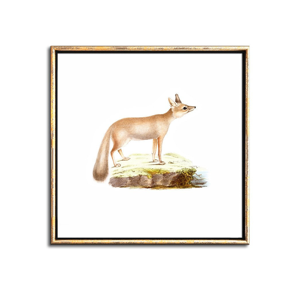 photo regarding Fox Printable identified as Woodland Pets Nursery Decor Fox Wall Artwork Print Printable