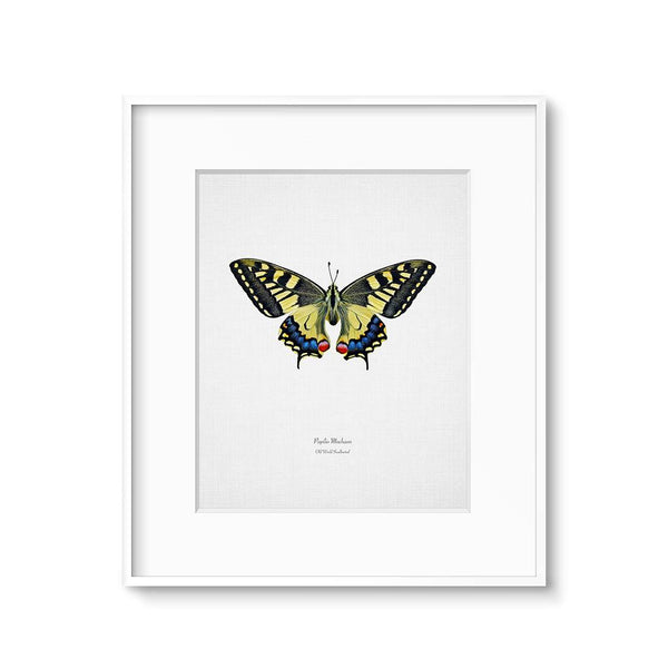 yellow swallowtail butterfly wall decor printable