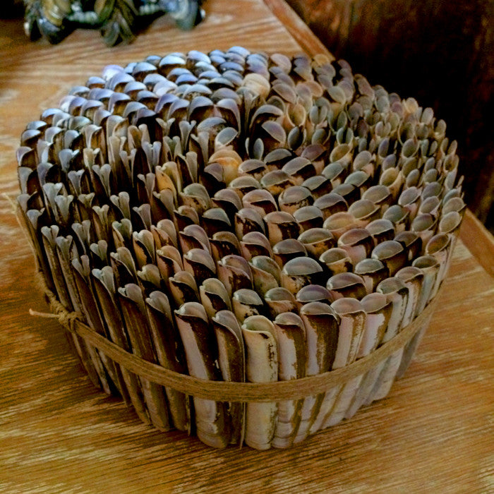 CAROLYN BROOKES DAVIES - BUILDING UP A HOUSE OF SHELLS