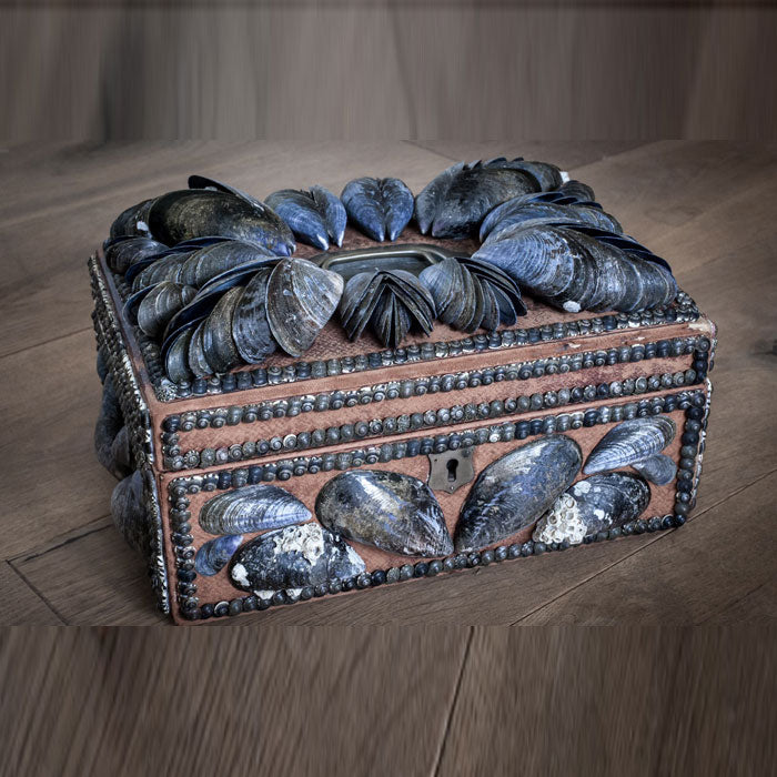 Mussel shell Box, by Carolyn Brookes Davies