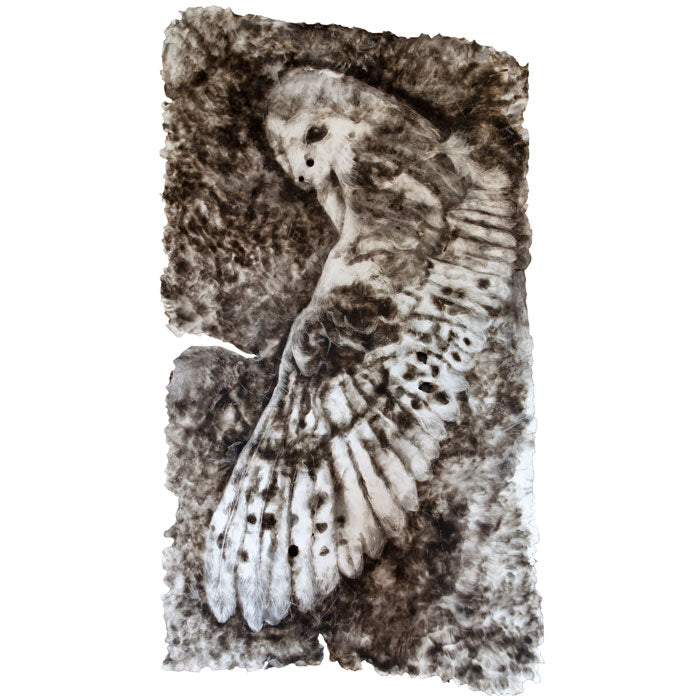 Mother Owl. Print of a smoke drawing by Norfolk based artist Maria Pavledis