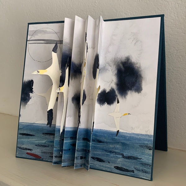 Birdflight Book (Gannets)
