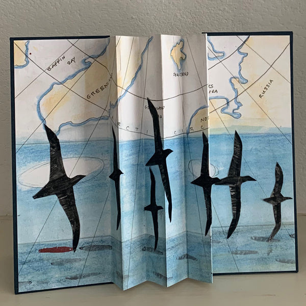 Birdflight Book (Shearwaters)