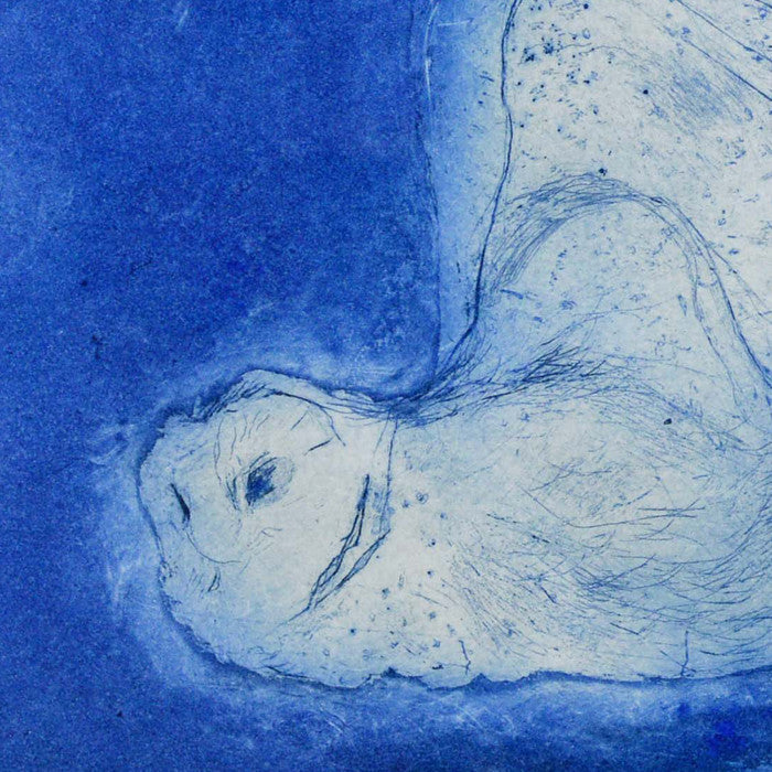 Little Barn Owl, ultramarine detail
