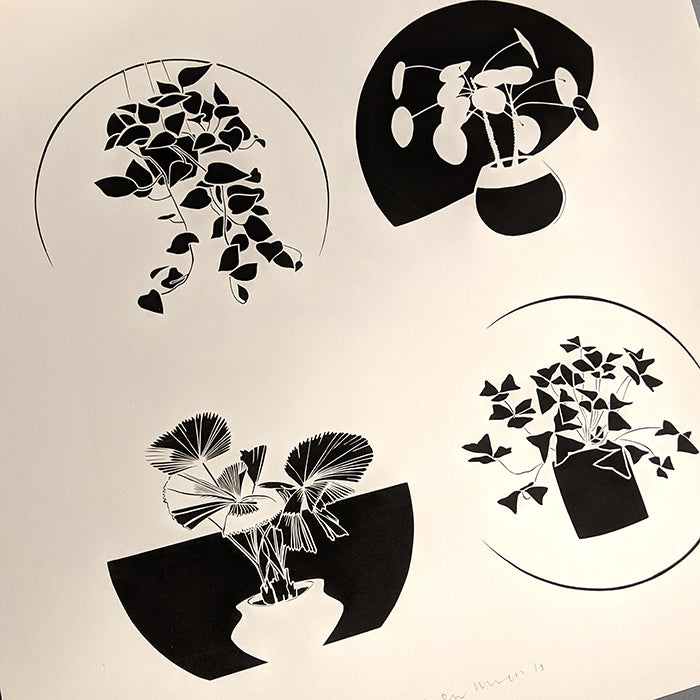 Paper cuts of house plants by Norwich based artist Ruth Howes.